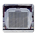 Stainless Steel Grille w/ 17 Vertical Bars