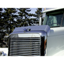 Stainless Steel Bug Shield Fits Freightliner Coronado