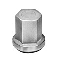 Stainless Steel Battery Nut